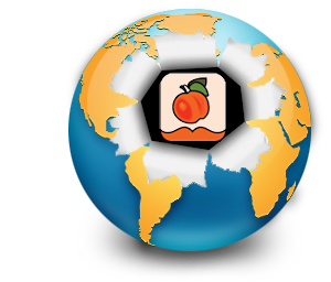 world burst logo
